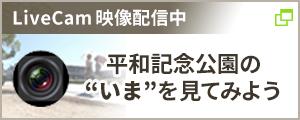 Live Cam映像配信